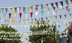 Summer Isles Festival