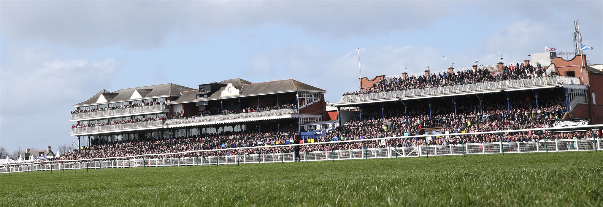 Image result for ayr racecourse
