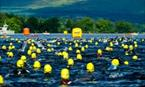 The Great Scottish Swim