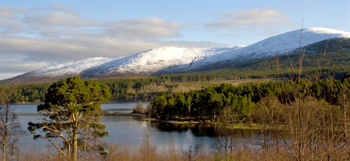 glenmore the highlands nature centres reserves