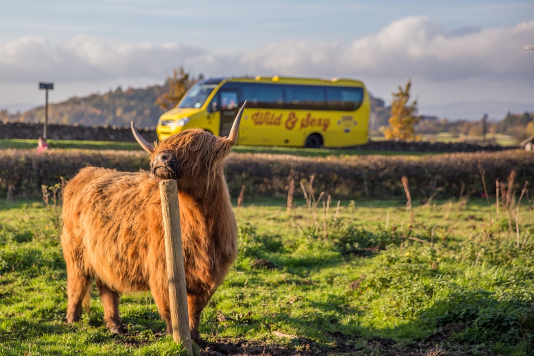 Haggis Adventure Tours Scotland