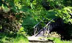 Clan Donald Skye - Castle & Gardens