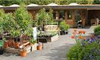 Woodside Plant Centre & Birdhouse Tearoom