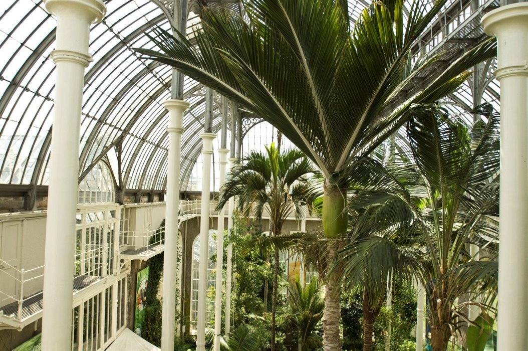 royal botanic garden edinburgh  edinburgh  u2013 parks
