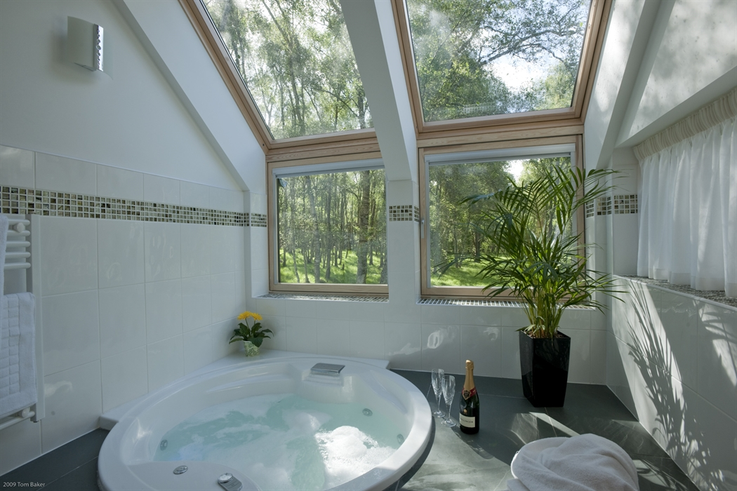 A hot tub in a bathroom overlooks woodland