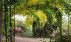 Monteviot House Gardens