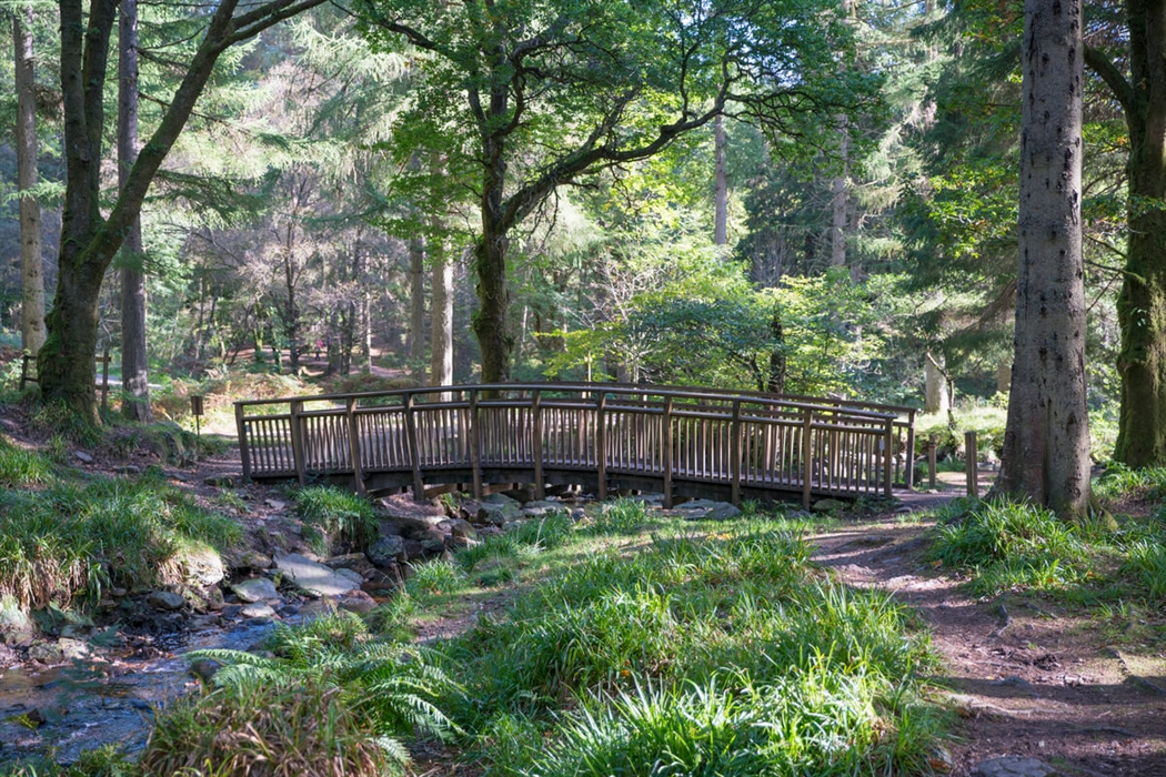 aberfoyle visitor guide accommodation things to do more