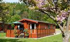 Sandwood Lodge - log cabin Loch Lomond