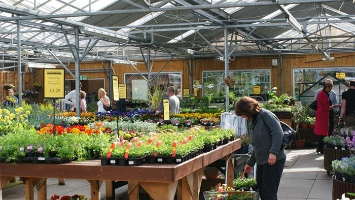 Garden Centre: Loch Lomond Homes & Gardens, Balloch