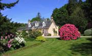 Finglen Bed & Breakfast