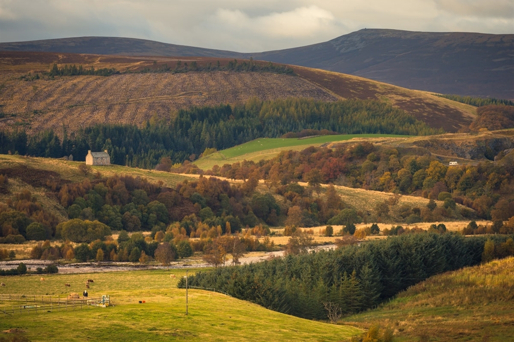 tomintoul visitor guide